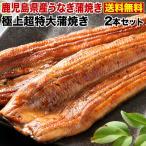 うなぎ 蒲焼き 国産 超特大蒲焼き(215g以上)2本セット