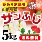 りんご 訳あり サンふじ 山形県産  家庭用5kg 送料無料