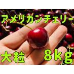アメリカンチェリー 1箱 8kg 一番大きいサイズ 9.5Row