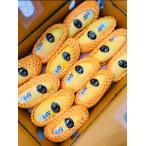 「特売」 タイマンゴー 大玉 一箱12玉 箱込5キロ マハチャノマンゴー