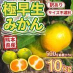 みかん 訳あり 熊本産 10kg 500g補償 サイズ不選別 極早生 果物 フルーツ 柑橘 家庭用