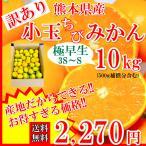 みかん 訳あり 小玉 送料無料 10kg(500g補償)3S〜Sサイズ 熊本県産 極早生ミカン