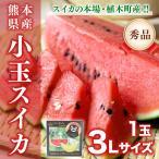 小玉スイカ 熊本産 1玉 3Lサイズ以上 送料無料 秀品