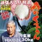 平成28年 新米 熊本県産 森のくまさん(持田米) 玄米30kg