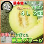 熊本産 メロン肥後グリーン4Lサイズ2個入り 伊藤さんがつくったメロン