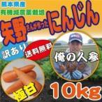 訳あり にんじん10K (有機減農栽培)
