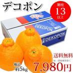 デコポン 約5kg 送料無料 熊本県産 不知火 光センサー選果 dekopon でこぽん デコ