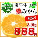 橘子 - ご自宅用に!! 訳あり極早生熟みかん2.5kg-小玉だから旨味が凝縮-熊本県産 【2セット購入で送料無料 3セット以降はおまけ付】