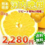 河内晩柑 みかん 文旦 訳あり 和製グレープフルーツ  ジュースにも 8kg 熊本県産 ジューシーみかん  送料無料