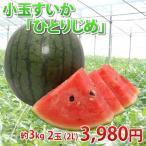 熊本県植木産 小玉すいか「ひとりじめ」1箱2玉入り(約3kg) 【送料無料】
