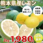 レモン 送料無料 希少な国産 熊本県三角産 レモン 2kg れもん 檸檬 塩レモンにも