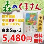 《28年産新米》 熊本県産 森のくまさん 白米 10kg (5kg x 2)【送料無料】