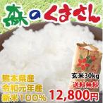《28年産新米》 熊本県産 森のくまさん 白米・玄米30kg【送料無料】