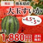 【夏のグルメセール】自宅用に!! 熊本県産 大玉すいか1玉(M~L) 約5kg前後【送料無料】