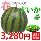 すいか 送料無料 熊本スイカ 熊本県産 1玉 4~5kg 送料無料 西瓜 suika