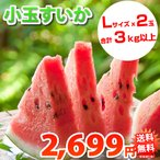 スイカ 送料無料 小玉すいか 熊本県産 ご自宅用 訳あり Lサイズ 2玉 計約3kg以上