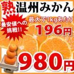 【最大で1kgあたり196円】熊本県産「熟」温州みかん2.5kg 複数購入でおまけ満載