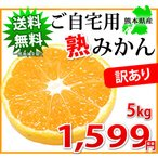 ご自宅用に 訳あり「熟」 みかん 5kg 熊本県産 送料無料 訳ありみかん ミカン 蜜柑