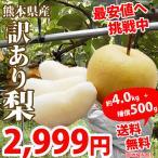 梨 送料無料 訳あり 熊本県産  約4.5kg ~ 5.0kg  豊水 幸水 秋月 新高 新興 ご自宅用 なし