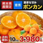 秀品 ぽんかん 柑橘 果物 熊本 フルーツ 送料無料 ポンカン