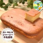 濃厚風味 希少なジャージー牛乳使用 阿蘇ジャージーチーズケーキ1個 2セット以上でおまけ 送料...