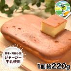 チーズケーキ 阿蘇 ジャージー牛乳使用 1個 220g 送料無料 スイーツ 3-7営業日以内に出荷予定(土日祝日除く)