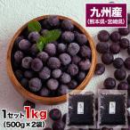 冷凍ブルーベリー 1kg 500g×2袋 送料無料 九州産 冷凍 ブルーベリー サイズ不選別 フルーツ 果物 取り寄せ 通販 7-14営業日以内に出荷予定(土日祝日除く)