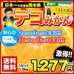 デコポンと同品種 熊本県産 訳ありデコみかん1.2kg(サイズ無選別)2セット購入で1セット分増量 クール便 ※複数購入でおまとめ 6月末-7月中旬頃より順次出荷