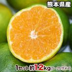 青いけど甘い 熊本県産 甘熟 グリーンハウスみかん 送料無料 3箱毎に1箱おまけ 秀品 約1.2kg S〜2S小玉サイズ限定 8月中旬-9月上旬頃より順次出荷