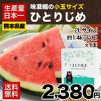 すいか 熊本県産 小玉 スイカ ひとりじめ 送料無料 1.4kg 2L×1玉 日本一  ギフト プレゼント 7-14営業日以内に出荷予定 土日祝日除く