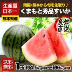 ギフト 送料無料 希少な冬のハウス栽培すいか スイカの本場熊本県産 くまもと冬すいか1玉 約4.5kg前後-約6kg前後 2月中旬-3月上旬頃より順次出荷