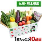【熊本復興支援】熊本・九州野菜セット たっぷり10品目 送料無料 7-14営業日以内に出荷予定(土日祝日除く)