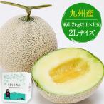 熊本産 マスクメロン 1玉 秀品 送料無料 2Lサイズ 1玉約1.2kg以上 7-14営業日以内に出荷予定(土日祝日除く)