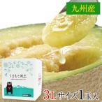 マスクメロン 九州産 1玉 秀品:3Lサイズ1玉約1.5kg以上 フルーツ 九州 お土産 メロン ギフト 高級メロン 7-14営業日以内に出荷予定(土日祝除)