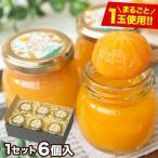 みかんゼリー ギフト プレゼント 熊本 食べ物 まるごとみかんゼリー 6個入り お取り寄せ お取り寄せグルメ 7-14営業日以内に出荷予定(土日祝日除く)