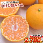 熊本県産 送料無料 柑橘 フルーツ 果物 みかん 蜜柑 ミカン 秀品