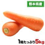 【熊本復興支援】人参(秀品)たっぷり5kg 送料無料 生産者:どんぐり会