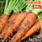 kumamotofood_ninjin-1
