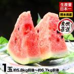 送料無料 訳あり品 スイカ日本一の産地 熊本産お徳用すいか1玉(約5.8kg前後-6.7kg前後)甘くてみずみずしい 7-14営業日以内に出荷予定(土日祝日除く)