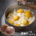 栗の季節到来 訳あり利平栗2kg(2L-Lサイズ) 送料無料 2セット購入で+1kgおまけ増量 熊本県産 10月上旬-10月末頃より順次出荷