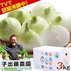 TVで紹介 塩たまちゃん 子出藤 ( ねでふじ ) さんの塩玉ねぎ 送料無料 梨のように甘くジューシーな熊本産の新玉ねぎ1箱5kg 4月末-5月中旬頃より順次出荷