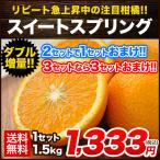 新種の 柑橘 スイートスプリング 送料無料 熊本県産  みかん 1.5kg  3L〜Lサイズ/3L-L混合  ※複数購入おまとめ配送 2月中旬-3月上旬頃より順次出荷
