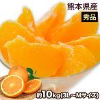 優品 熊本産 清見 オレンジ 約10kg / 3L〜Mサイズ 送料無料 柑橘 の 名産地 熊本産 限定 旬 の みかん 贈答 ギフト 2月末-3月中旬頃より順次出荷予定