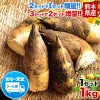 送料無料 熊本県産 朝掘りたけのこ1kg 2セット分購入で1セット分増量 3セット購入で3セット分おまけ 4月末-5月中旬頃より順次出荷