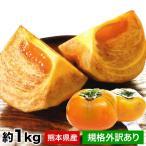 ばってん 甘柿 種なし 熊本県産 規格外訳あり 約3kg 送料無料 9-16玉 2L-5L フルーツ 果物 柿 甘柿 カキ 7-14営業日以内に出荷予定 土日祝日除く