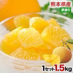 柑橘类 - 甘夏 みかん 1.5kg 訳あり 送料無料 熊本県産 旬 の みかん 箱買い ※おまとめ配送 2セット購入で1セット増量 5月末-6月中旬頃より順次出荷