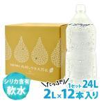 1箱から送料無料 阿蘇外輪山 九州シリカ天然水 たっぷり24L(2L×12本入り) ナチュラルミネラルウォーター 軟水 3-5営業日以内に順次出荷(土日祝日除く)