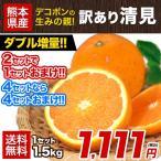 訳あり 清見 オレンジ 1.5kg 約6〜約20玉前後 送料無料 熊本産 みかん 2セット購入で1セット分増量 2月末-3月中旬頃より順次出荷予定