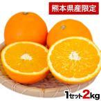 特選 晩白柚バンペイユ柑橘 果物 熊本 フルーツ 送料無料
