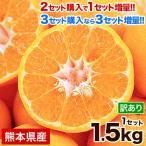 甘熟 ポンカン 1.5kg 熊本県産 訳あり 送料無料 みかん サイズ無選別 2セット購入で1セット分 3セット購入なら3セット分の増量  1月中旬-2月上旬頃より順次出荷